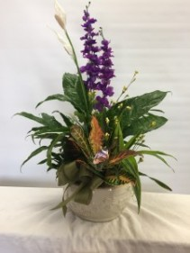 In House Planter Ceramic Disgarden With Silk Flowers