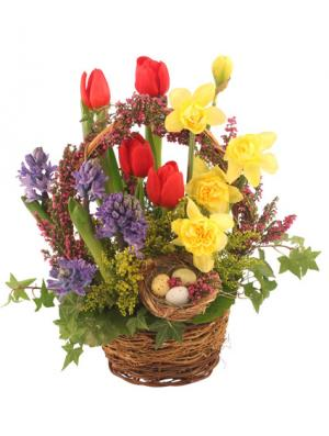 It's Finally Spring! Basket Arrangement in Somerville, TX | Wine & Roses Flower Shop