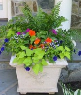 Let Blooms Plant Mom's Porch Containers