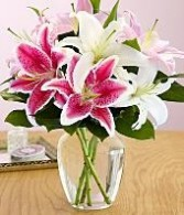 Liliies for someone special Vase Arrangement in Bristol, CT | DONNA'S FLORIST & GIFTS