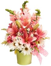 LITTLE PRINCESS FLOWER  BOUQUET in Clarksburg, MD | GENE'S FLORIST & GIFT BASKETS