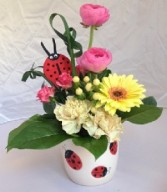 Lovely Ladybug Mother's Day in Du Bois, PA | BRADY STREET FLORIST