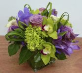 LUCKY PURPLE DRAGON ALL OCCASIONS in Delta, BC | DELTA FLOWERS & GIFTS
