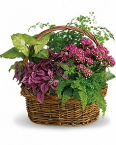 lush garden  Garden Basket in Ventura, CA | Mom And Pop Flower Shop