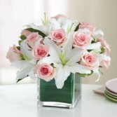 Modern Embrace Pink Rose Lily Cube Everyday all occasion