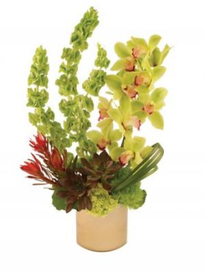 Modern Green Arrangement in Miami, FL | CYPRESS GARDENS FLOWER SHOP OF MIAMI