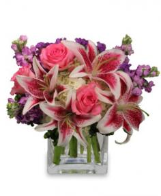 More Than Words... Flower Arrangement in Denver, CO | THE STERLING ROSE FLORIST