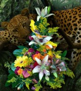 On The Prowl All Occasions in Delta, BC | DELTA FLOWERS & GIFTS