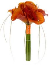 ORANGE CALLA LILIES in Rockville, MD | ROCKVILLE FLORIST & GIFT BASKETS
