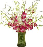 ORCHID EMBRACE  BOUQUET in Clarksburg, MD | GENE'S FLORIST & GIFT BASKETS 