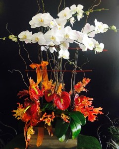 Orchid Planter with seasonal decorations  in Fresno, CA | FLOWERS AND MORE