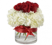 OUR LOVE 6 Red Roses & White Hydrangea