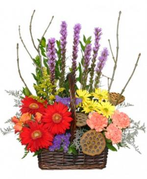 Out Of The Woods Flower Basket in Kingsport, TN | ALL OCCASION GIFT BASKETS & FLOWERS
