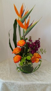 Paradise High Style Mothers Day in Albany, NY | CENTRAL FLORIST