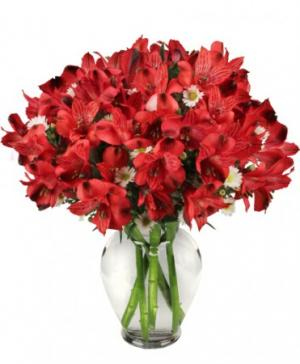 Passionate Peruvian Lily Bouquet in Richland, WA | ARLENE'S FLOWERS AND GIFTS