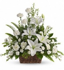 Peaceful White Lilies Basket in Eau Claire, WI | 4 SEASONS FLORIST INC.