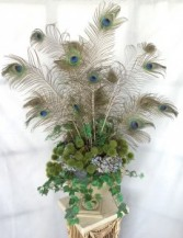Peacock Feathers Silk/Permanent Arrangement