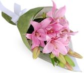 PINK  ASIATIC  GIFT WRAPS BOUQUET in Clarksburg, MD | GENE'S FLORIST & GIFT BASKETS