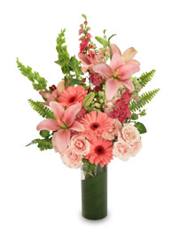 Pink Persuasion Arrangement