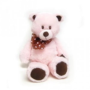 Pink Plush Teddy Bear New Baby in Richland, WA | ARLENE'S FLOWERS AND GIFTS