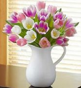 Pitcher of Tulips in Gainesville, FL | PRANGE'S FLORIST