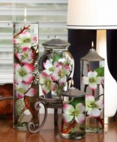 Premium Dogwood Candles Oil Candles