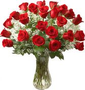 24  PREMIUM RED ROSES  LONG STEMS ARRANGEMENT in Rockville, MD | ROCKVILLE FLORIST & GIFT BASKETS