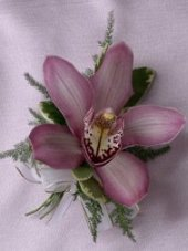 CYMBIDIUM ORCHID Prom Corsage in Lake Worth, FL | A FLOWER PATCH