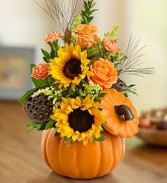 Pumpkin N' Posies Keepsake Pumpkin Container