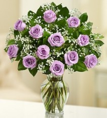 Purple Premium Long Stem Roses One or Two Dozen Purple Roses your choice