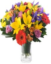 RAINBOW MELODY BOUQUET in Rockville, MD | ROCKVILLE FLORIST & GIFT BASKETS