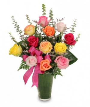Rainbow of Roses Arrangement in Walkersville, MD | ABLOOM LTD