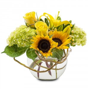 Rays of Sunshine Fresh Flower Arrangement in Saint Petersburg, FL | ABSOLUTELY BEAUTIFUL FLOWERS