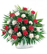 RED AND WHITE CARNATION BASKET in Edison, NJ | E&E FLOWERS AND GIFTS