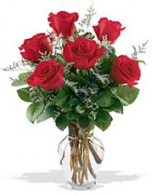 1/2 dz   Red  Roses