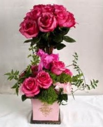Rose Topiary  Stunning Bright Pink Roses