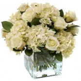DOZEN WHITE ROSES AND HYDRANGEAS