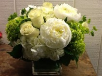 Seasonally Fresh Hydrangea and Rose Arrangement Dense Square Cube