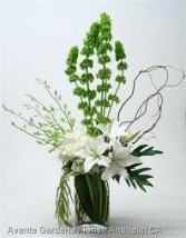 SF 4- Mixed Flowers in a vase Flowers and colors may vary