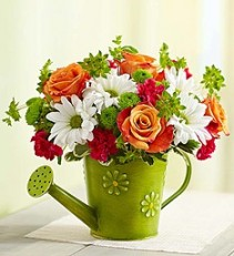 Showers of Blossoms In Chic Watering Can