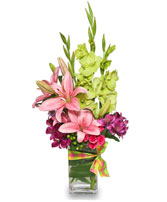 SOOTHING SPRINGTIME Arrangment in Miami, FL | THE VILLAGE FLORIST