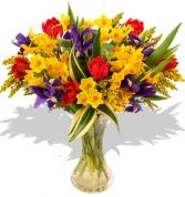 SPRING DEW ARRANGEMENT in Rockville, MD | ROCKVILLE FLORIST & GIFT BASKETS