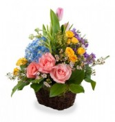 Springs Sprung Fresh cut Roses, Hydrangea, Tulips and Premium Fill