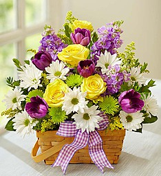 Springtime Wishes Basket Arrangement in New Wilmington, PA | FLOWERS ON VINE
