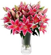STARGAZER LILIES BOUQUET in Clarksburg, MD | GENE'S FLORIST & GIFT BASKETS 