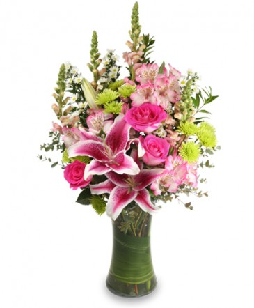 Floral Arrangements starstruck floral arrangement in lancaster, ny - petals to please