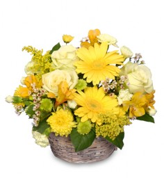 SUNNY FLOWER PATCH in a Basket