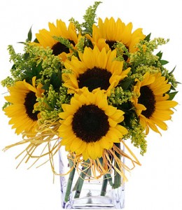 Sunny For Sunflowers