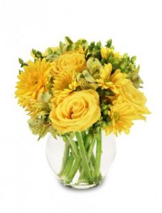 Sunshine Perfection Floral Arrangement in Parkville, MD | FLOWERS BY FLOWERS
