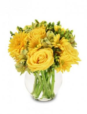 Sunshine Perfection Floral Arrangement in Oakland, ME | VISIONS FLOWERS & BRIDAL DESIGNS